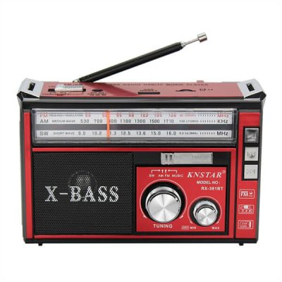 رادیو اسپیکر بلوتوثی قابل حمل Golon مدل RX-381BT